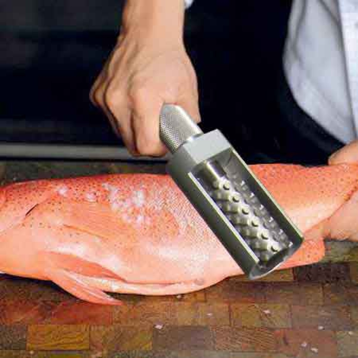 fish scaler Removes fish scales quick and easy with this stainless steel fish scaler, simple  and effective.